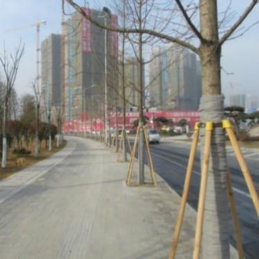 北京扎帶批發 樹木支撐架價格低可循環使用