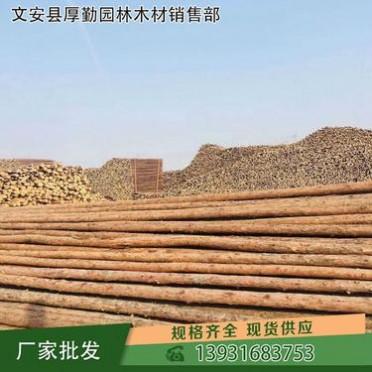 【厚勤】樹木支撐架采購供應 山西樹木支撐架扎帶供應批發