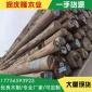 阔变豆原木厂家 南美白酸枝阔变豆原木 家具酸枝木 非洲酸枝柚木