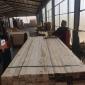小型木材加工厂规模 花旗松木材加工厂图片 顺通木材
